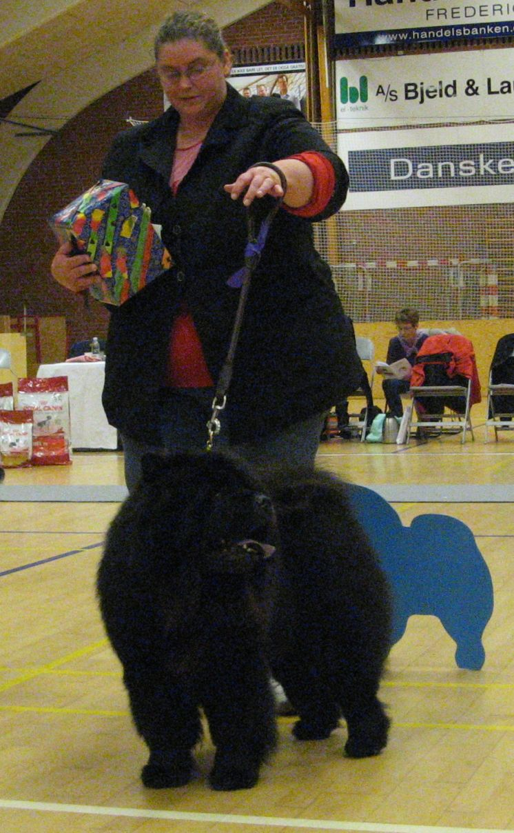 Champ.male 2. CH Nin-T`Sun Ricko Black